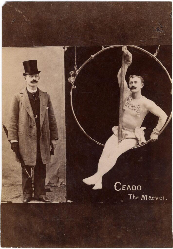 ceado-artist-aerial-hoop